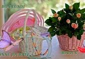 paniers rose et blanc