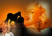 marylin et chevaux