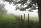 brouillard /Pierre Chatel Isère