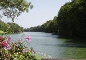 Puzzle le Loiret