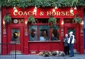Puzzle Façades - Coach & Horses - London
