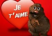 Puzzle René est amoureux