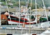 Fécanp (le port de pêche)
