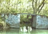 vieux pont  Venise verte
