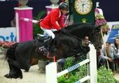 la grâce du cheval