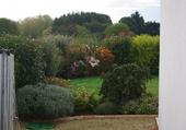 Le jardin du matin