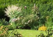 fond de jardin