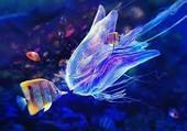 Les poissons féerique
