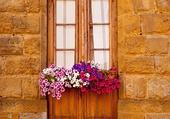 Doors - Beautiful Portal