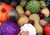 légumes anciens
