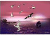 Puzzle vol oiseaux
