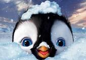 Puzzle Bébé pingouin