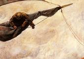 Krohg_Christian_Fixing_The_Sail