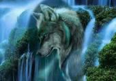Puzzle cascade du loup