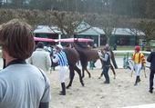 Courses a Fontainebleau