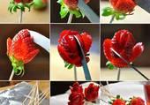 fleurs de fraise