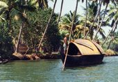 Backwaters du Kerarla
