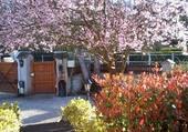 jardin de mars