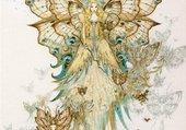 princesse papillion
