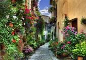 rue en fleurs