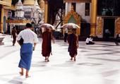 Les bonzes de Rangoon