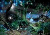 Puzzle forêt des fées