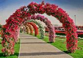 arcade de fleurs