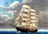 L'Etoile de mer
