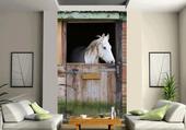 le cheval au salon