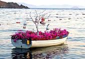 barque fleurie