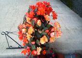 Puzzle les  fleurs