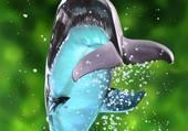 Puzzle plongeon du dauphin