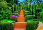 jardin d eden