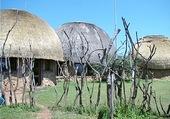 village Swarzi