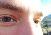 Puzzle yeux