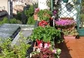 Vue sur terrasse fleurie 1