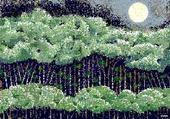 Puzzle woods in avon