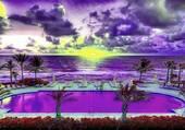 la vie en couleurs flashy