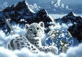 Lionceau et montagne