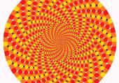 Puzzle Illusion d'optique
