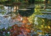 Puzzle jardin de Claude Monet