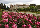 Puzzle monastère de Nice cimiez