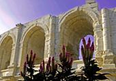 Détail sur Arènes de Nîmes -Gard