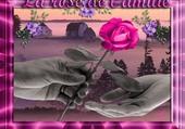 la rose de l amitié