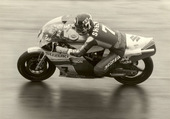 SHEENE BARRY