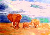 Puzzle Eléphants de Tanzanie
