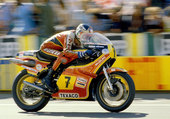 Puzzle BARRY SHEENE