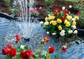 jet d'eau fleuri