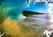 rouleau a hawaii