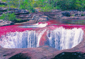 Puzzle cascade Caño Cristales  colombie